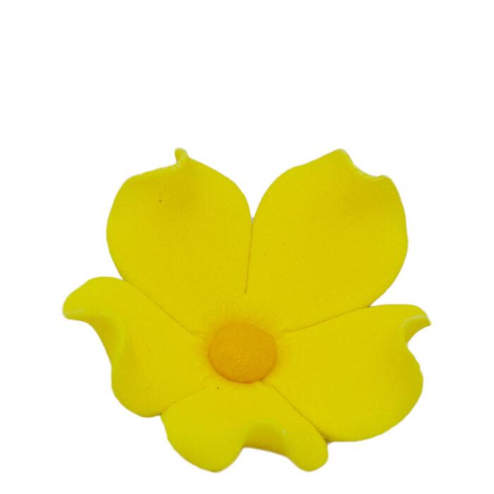 Άνθη Ζύμης Λουλούδι Κίτρινο (τεμ).
