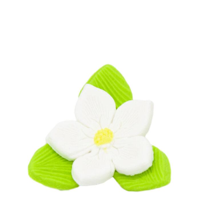 Άνθη Ζύμης Λουλούδι Πράσινο Λευκό Κίτρινο (τεμ).