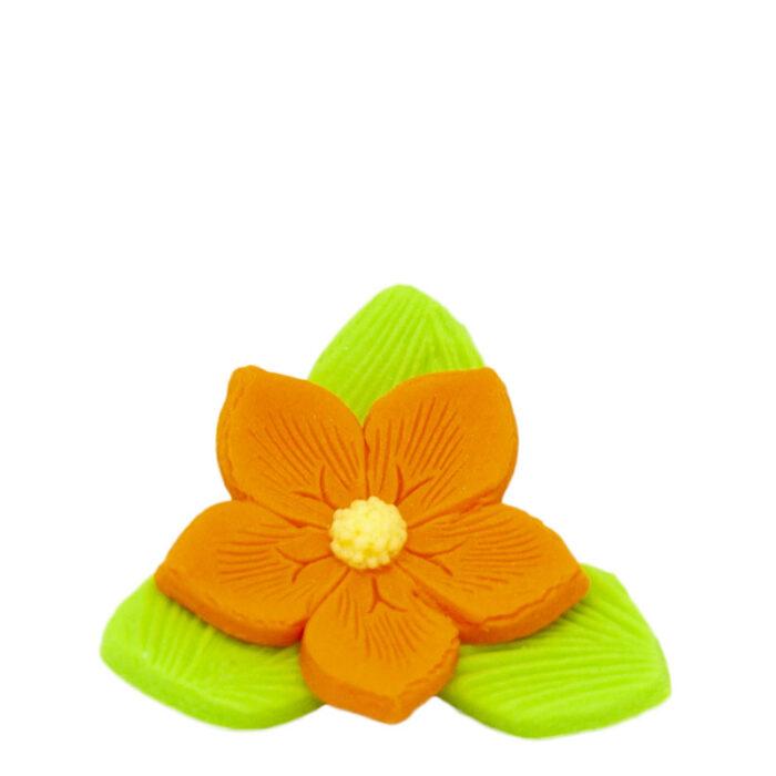 Άνθη Ζύμης Λουλούδι Πράσινο Πορτοκαλί Κίτρινο (τεμ).