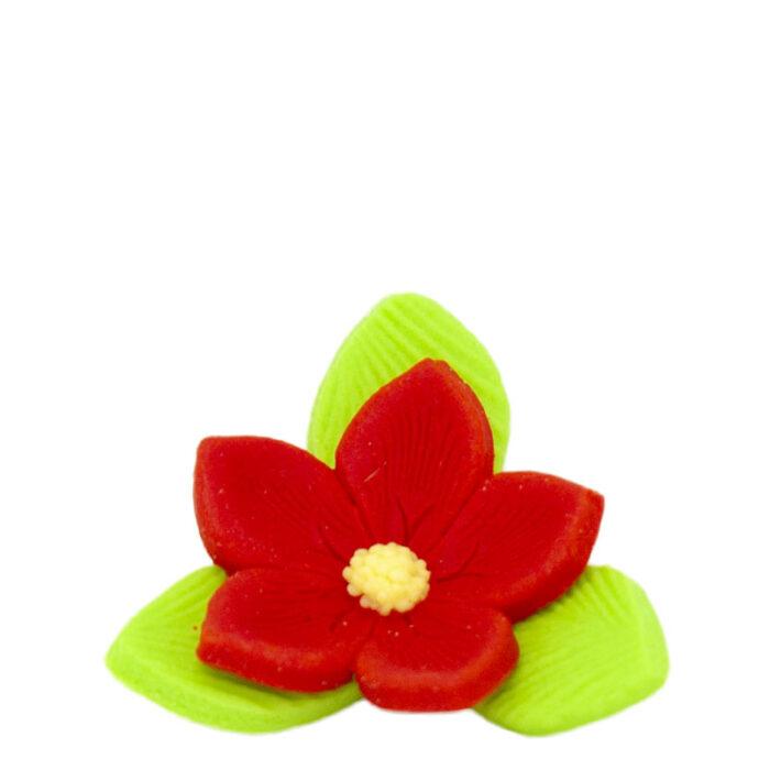 Άνθη Ζύμης Λουλούδι Πράσινο Κόκκινο (τεμ).